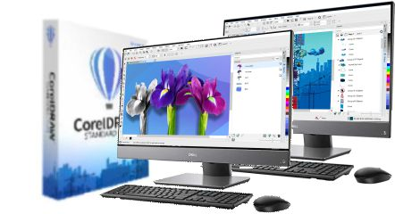 CorelDRAW STANDARD 2020 LIC PC2